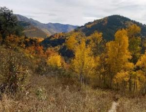 Y Mountain Utah